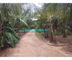 3 Acres Coconut farm for sale at Kinathukaduvu, Coimbatore