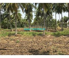 Canal Irrigated 50 Acres Paddy Land for sale near Narsapur