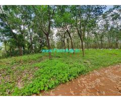 35 Acres farm land for sale at Udupi. Rubber Plantation.