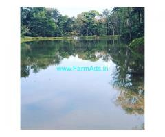 140 acre coffee estate for sale in Chikkamagaluru