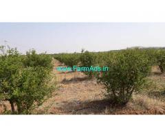 4 acres plain agricultural land available for sale at Gowribidanur D palya