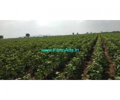 3 Acres Agriculture Land for Sale in Girikottapally