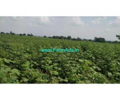 1 Acre Agriculture Land for Sale near Shankarpally