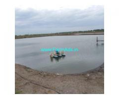 48 Acres Aqua Ponds for Sale near Pedapalem