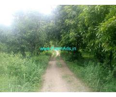 18 Acres Mango Farm for Sale near Chigurumamidi