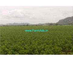 20 Acres of Agriculture Land for Sale in Yadagirigutta