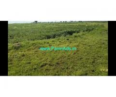 4.5 Acres Agriculture Land for Sale near NarayanKhed