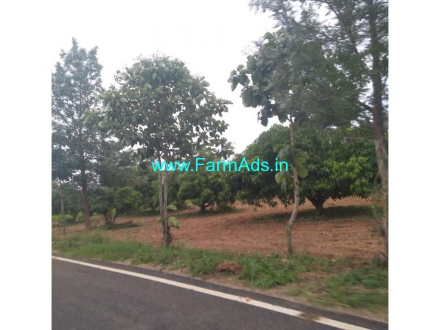 Mango Farm land for sale. mysore to land 24 km bogadi gaddige route.