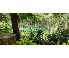150 Acres Coffee Estate property available for sale at Chickmaglur