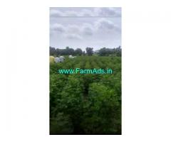 11 Acres Agriculture Land for Sale near Thirmalpalle