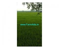 12 Acres Agriculture Land for Sale near Vemukonda
