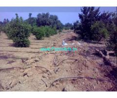 5 Acres Agriculture Land for Sale near Chitvel
