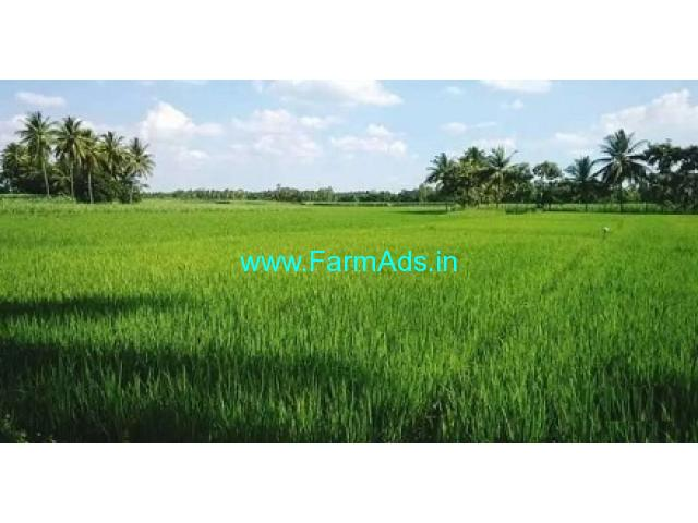 8.01 Acres Agriculture Land for Sale near at Penumanchili