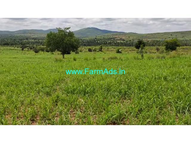 11 Acres low budget farm land for sale at Javagonddahalli Hobli, Hiriyur.