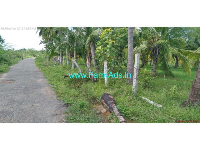 4 Acres Coconut farm for sale at Nadupatti, Pudukottai near Tanjavur.