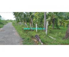 4 Acres Coconut farm for sale at Nadupatti, Pudukottai near Tanjavur.
