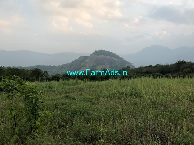 40 Acres low budget Agriculture Land is for sale at Tirunelveli Dist