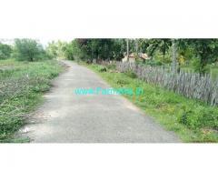 4 Acres Coconut Farm Land for Sale near Thanjavur