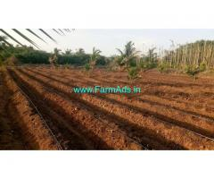 4.5 Acres developed Farm land for sale at Myadanahole, Hiriyur.