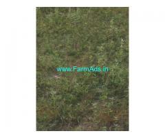 36 Gunta Agriculture Land for Sale near Dharur
