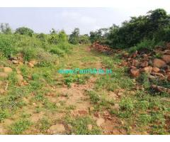 2.5 Acres Mango Farm Land for Sale near Rompicharla