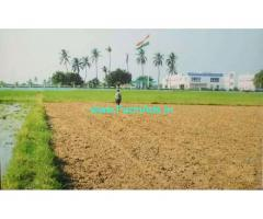 11.5 Acres Agriculture Land for Sale near Buchireddypalem