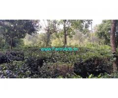 1.4 Acre Farm Land for sale near Vagamon