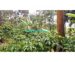 1 Acre Coffee Estate for Sale at Payyampally