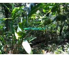 120 Acres Coffee Estate for sale at Megamalai near Woodbriar Tea Estate