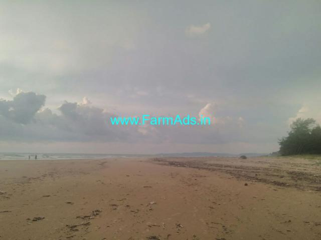 2 Acres Beach facing land for sale. Location Kumta near to Gokarna