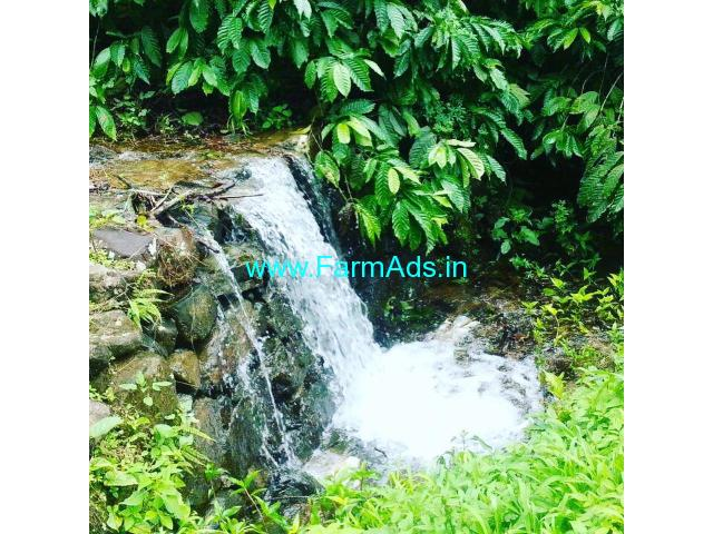 60 acre robusta coffee plantation for sale In Chikkamgaluru.