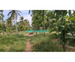 10 Acres coconut farm land for sale at Huliyar Hobli, Chikanayakanahalli