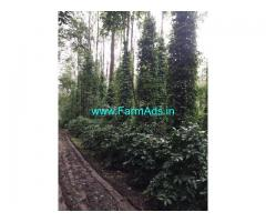 8 Acres Coffee Estate for sale at Chickmaglur, Mallenahalli