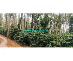 2 Acres Coffee Estate available for sale at Chickmaglur district, Aldur