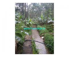 Attappady kerala. 3.67 acres arecanut plantation for sale.