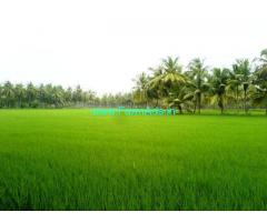6 Acres Agriculture Land for Sale near Bhimavaram