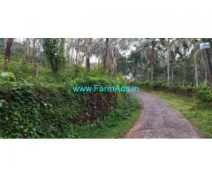 1 Acre Rubber Estate for sale at  Bandadka, Kasaragod. Kerala