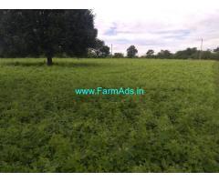 1 ACRE FARM LAND for sale - Near Hullahalli , Nanjangud Taluk, Mysore