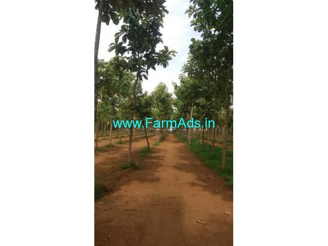 3 Acres Agriculture Land for Sale near Kanakapura