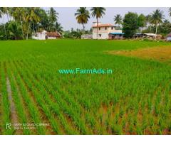 21 cents farm land for sale at Vellalapatty 16 kms from salem