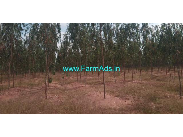 160 Acres Agriculture Land for Sale near Veldanda