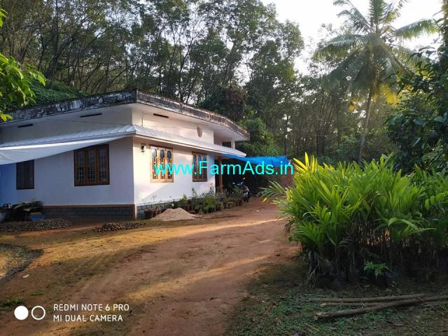 5.40 ACRE MULTI - AGRILAND for sale at KALLAPPALLI, Kasargode, Kerala