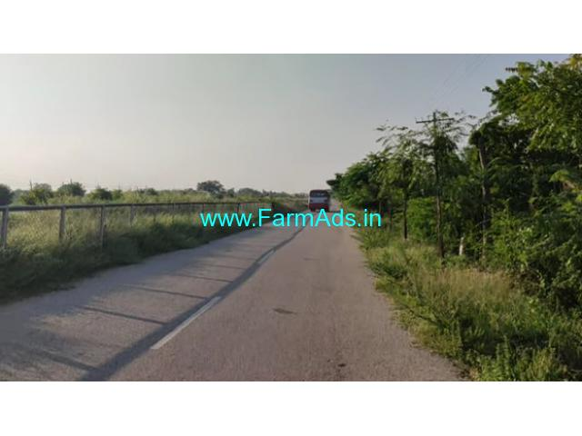 1 Acre Coconut farm for sale at Sira, Bangalore - Pune Highway