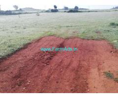 5.5 Acres Agriculture Land for Sale near Pileru
