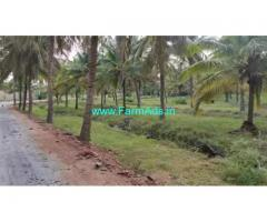 1 Acre coconut farm land for sale at Sira Taluk, Tumkur