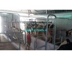 Hitech Dairy Farm in 2 acre land for sale pollachi palakkad border