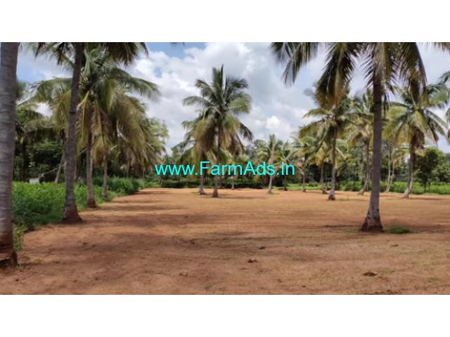 2 acre coconut farm for sale near Malavalli, 80km from bangalore