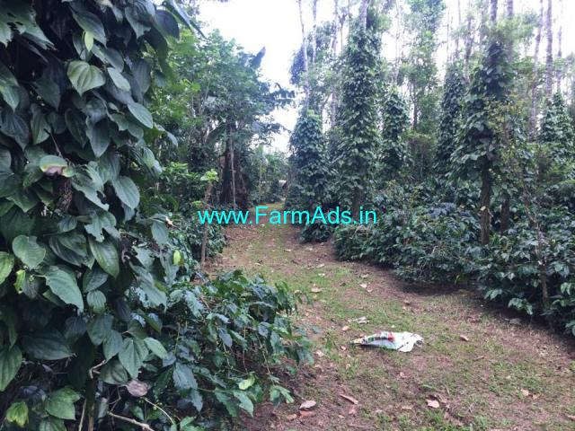 4 acre coffee estate for sale at Kabbinasetve - Mudigere Road.