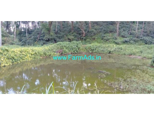 5 acres Arabica Coffee Estate for sale just 16 km from Chikmagalur.