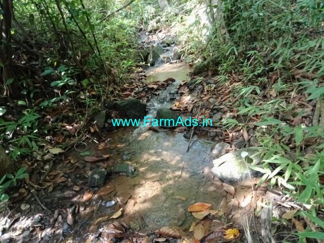 5 acre land for sale in Hettur sakaleshpura, Hassan, 28 km from city